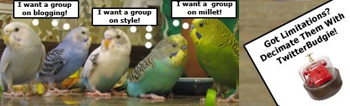 Why Use TwitterBudgie?